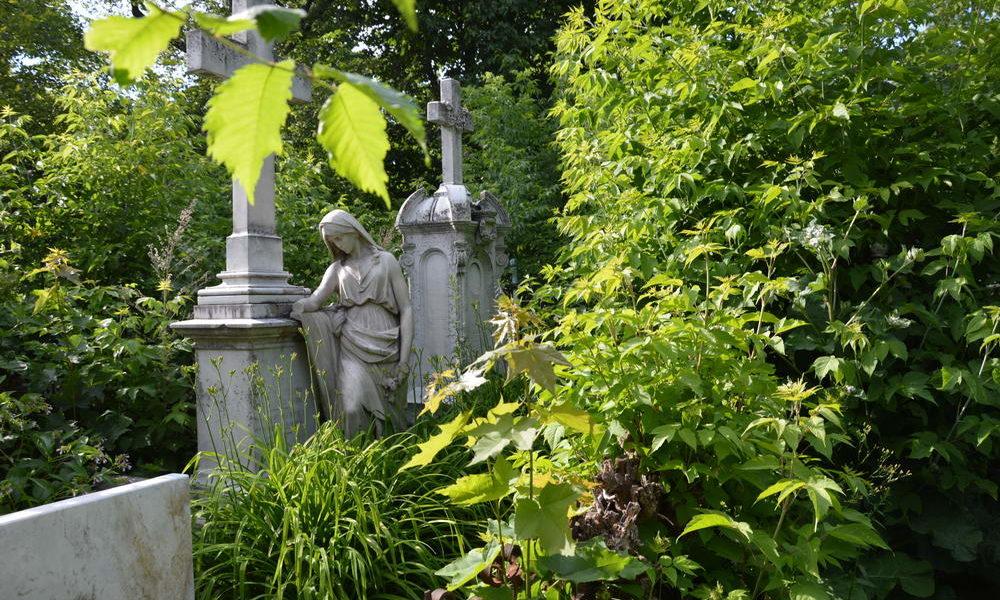 Субботник 30.06.2018 на лютеранско-немецком кладбище