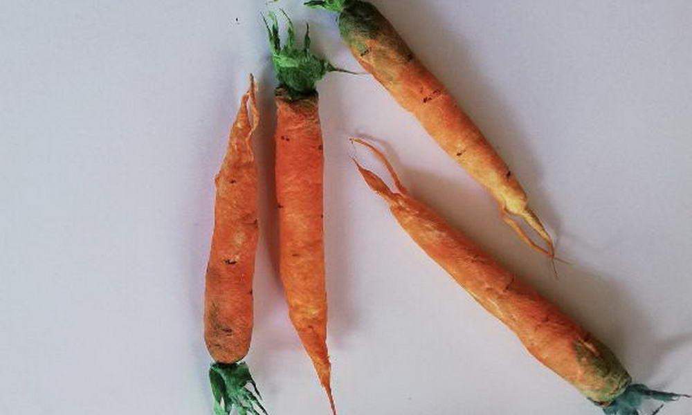 Ватные морковки на Ostern
